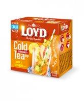 Loyd ceai rece Apple&Pineapple 12 plicuri piramida